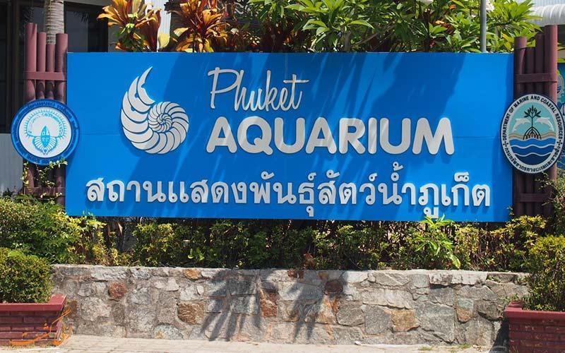 آکواریوم پوکت، یک تجربه شگفت انگیز از اعماق دریا