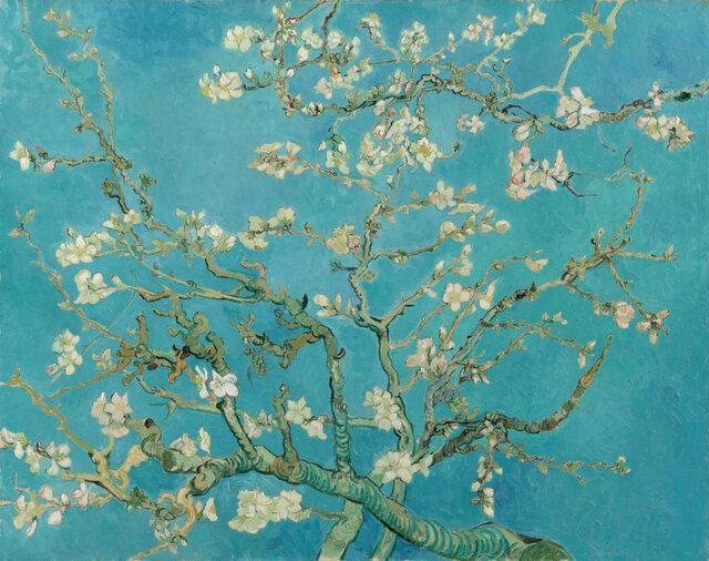 داستان نهفته در شکوفه بادام ون&zwnjگوگ
