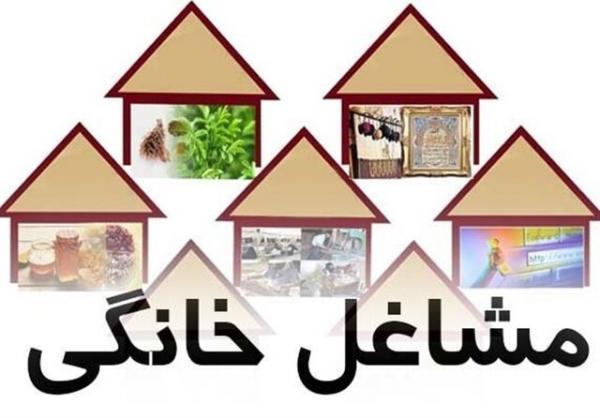 طرح ملی توسعه مشاغل خانگی؛ فرصتی برای کاهش بیکاری