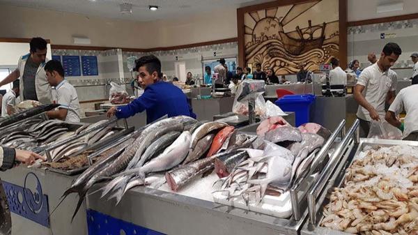 رشد 35درصدی قیمت انواع ماهی در بازه زمانی یک ساله